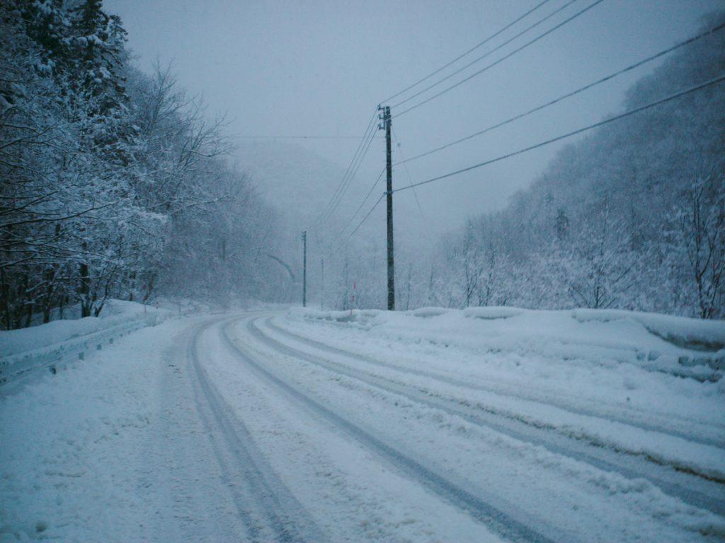 油断大敵の冬